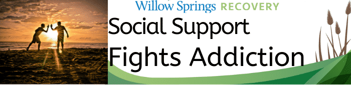 Willow-Social-Support-1